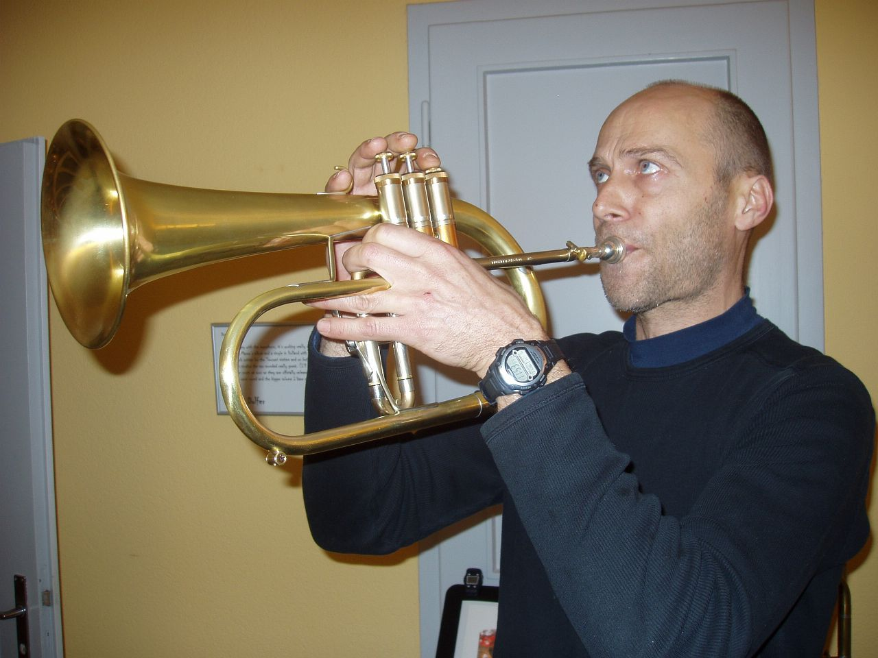 Musiker 095